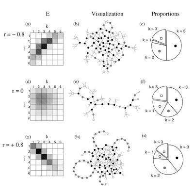 20. Information cascades on degree-correlated random networks